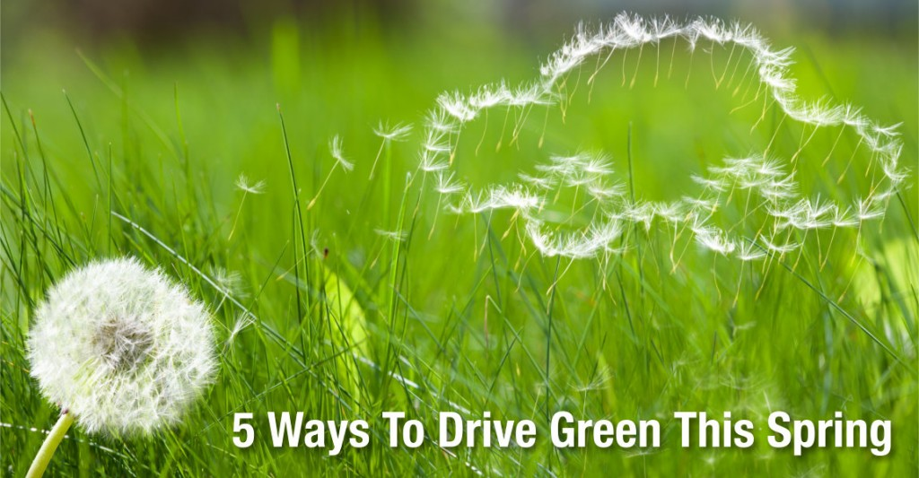 5-Ways-To-Drive-Green-This-Spring