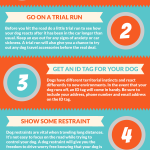 Pet-Month-Travel-Tips-Infographic