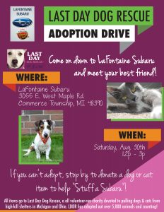 LDDR Adoption Drive Flyer