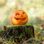 5 Tips For Picking the Perfect Pumpkin