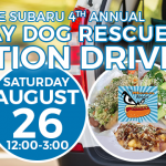 LaFontaine Subaru's 4th Annual Last Day Dog Rescue Adoption Drive